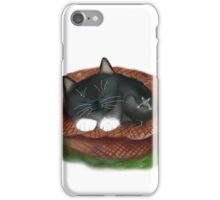 Nap in Straw Hat for Kitty and Mouse iPhone Case/Skin