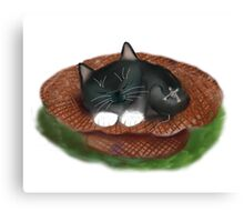 Nap in Straw Hat for Kitty and Mouse Canvas Print