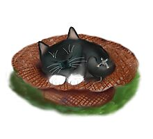 Nap in Straw Hat for Kitty and Mouse Photographic Print