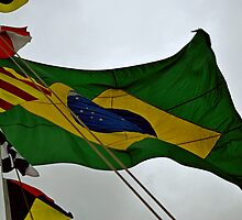 Brazilian Flag  by blueguitarman