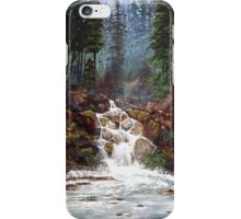 Clearwater Falls iPhone Case/Skin