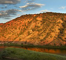 Colorful Colorado River by Steve  Taylor