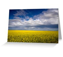 Carpet of Sunshine Greeting Card