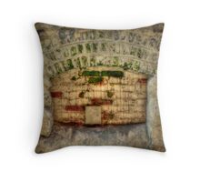 Once I Was a Window Throw Pillow