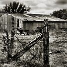 Behind The Fence      ( BoneYard Series ) by Carla Jensen