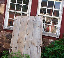 Windows Through Time by Ann Rodriquez
