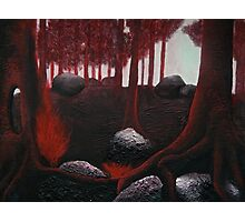 Monochrome Forest Painting Photographic Print