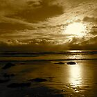 """Sepia Storm Approaching"" by Tim&Paria Sauls"