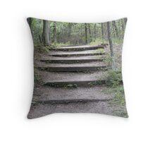 Zen Pathway Throw Pillow