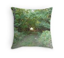 Country Road of Memories Throw Pillow