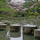 Stepping Stones by phil decocco
