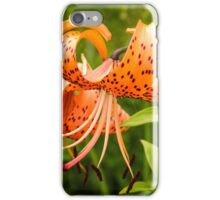 Turk's Cap Lilly iPhone Case/Skin