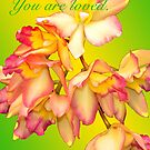 YOU ARE LOVED (CARD 2040) by Thomas Barker-Detwiler