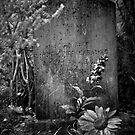 Grave Marker by Mary Ann Reilly