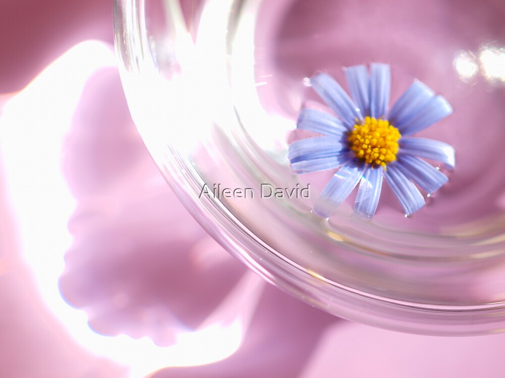 Floating 1 by Aileen David