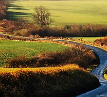 Wolds Road by Dennis Wetherley