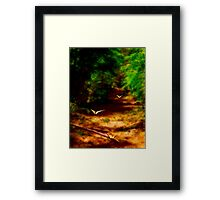 Into The Enchanted Forest! Framed Print