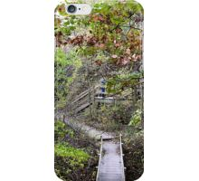 Stairs at Starved Rock, Illinois iPhone Case/Skin