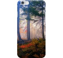 Autumn Fire And Mist iPhone Case/Skin