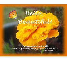 Hello, Beautiful! Photographic Print