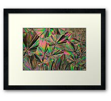 Gadolinium nitrate crystals under the microscope Framed Print
