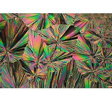 Gadolinium nitrate crystals under the microscope Photographic Print