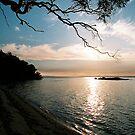 Coles Bay by Louise Marlborough