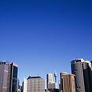 Sydney skyline by Louise Marlborough