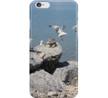 gaviotas iPhone Case/Skin