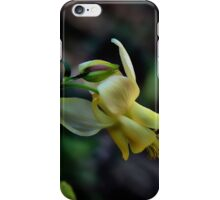 Wild Yellow Columbine iPhone Case/Skin