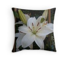 Peace, Love and Tranquility to all Throw Pillow