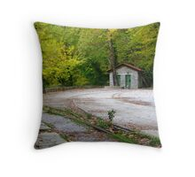 Old railway Throw Pillow