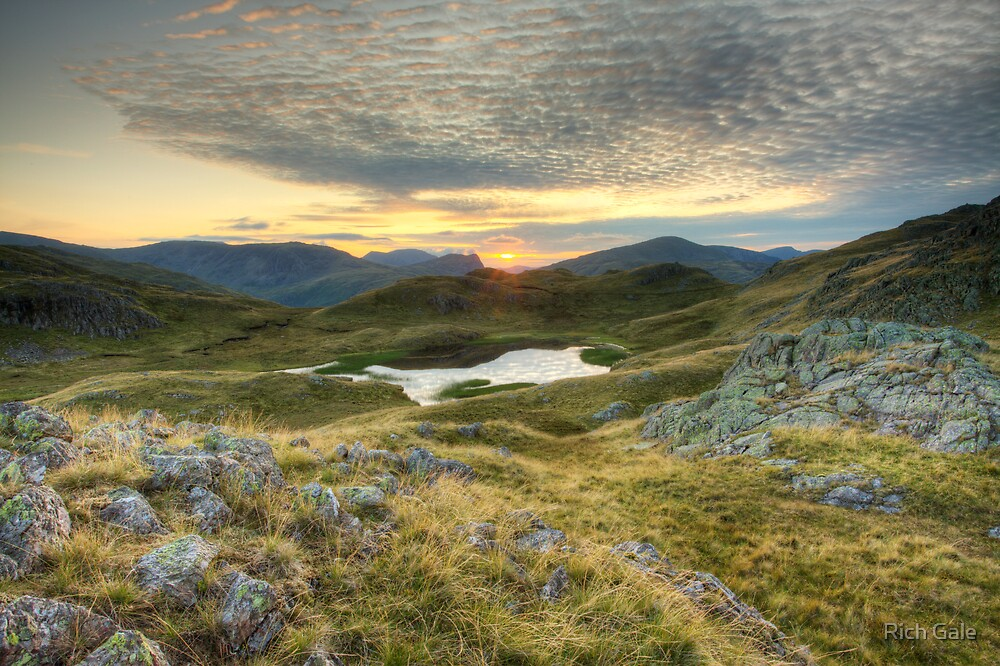The Tarn of Leaves by Rich Gale