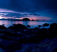 220º Island Bay Dawn  by Ken Wright