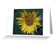 Drone Sunflower Greeting Card