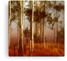 T a l l   Timbers Canvas Print