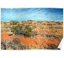 Simpson Desert Dune Poster