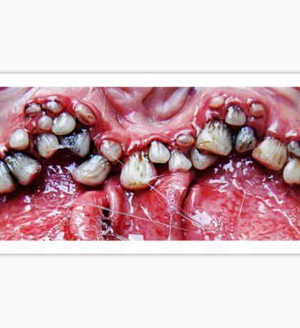 brush yer teeth Sticker