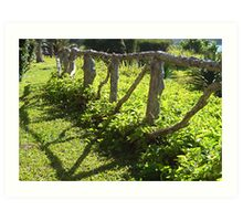 Willowbank Fence Art Print