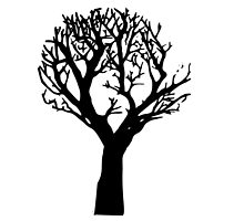 Beautiful silhouette of a tree by Randomthings