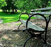 Park Bench by Perspective