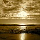 """Basking In Sepia Too"" by Tim&Paria Sauls"