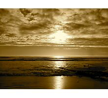 """""""Basking In Sepia Too"""" Photographic Print"""
