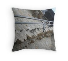 Rothenberg Staircase Throw Pillow