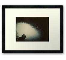 3805 Framed Print