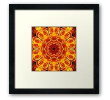 Orange Roses Kaleidoscope 117 Framed Print
