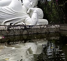 Peaceful Buddha by Dave Lloyd