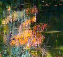 Languid by MarianBendeth