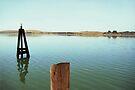 Bodega Bay by John Douglas