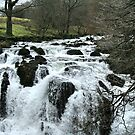Swallow Falls, Betws y Coed, North Wales UK by AnnDixon